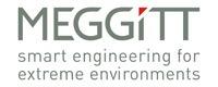 MEGGITT-Logo--Strap-RGB