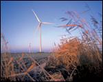 castrol-wind-turbine