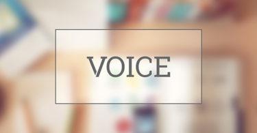 voice_default